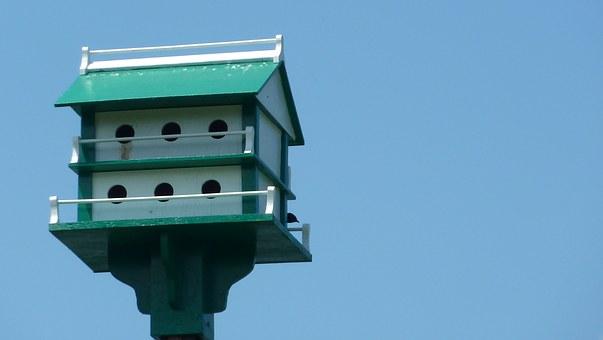 birdhouse-165687__340.jpg