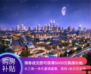 新西塘孔雀城 封面图_0