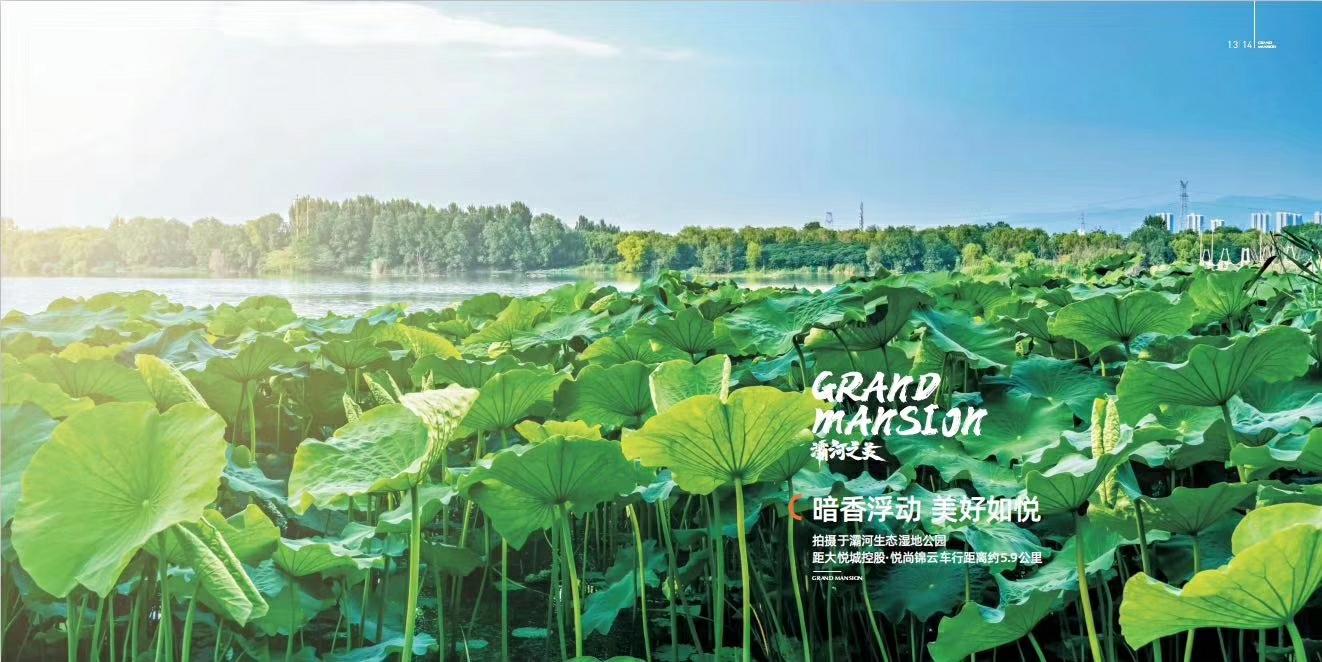 悦尚锦云视频封面图